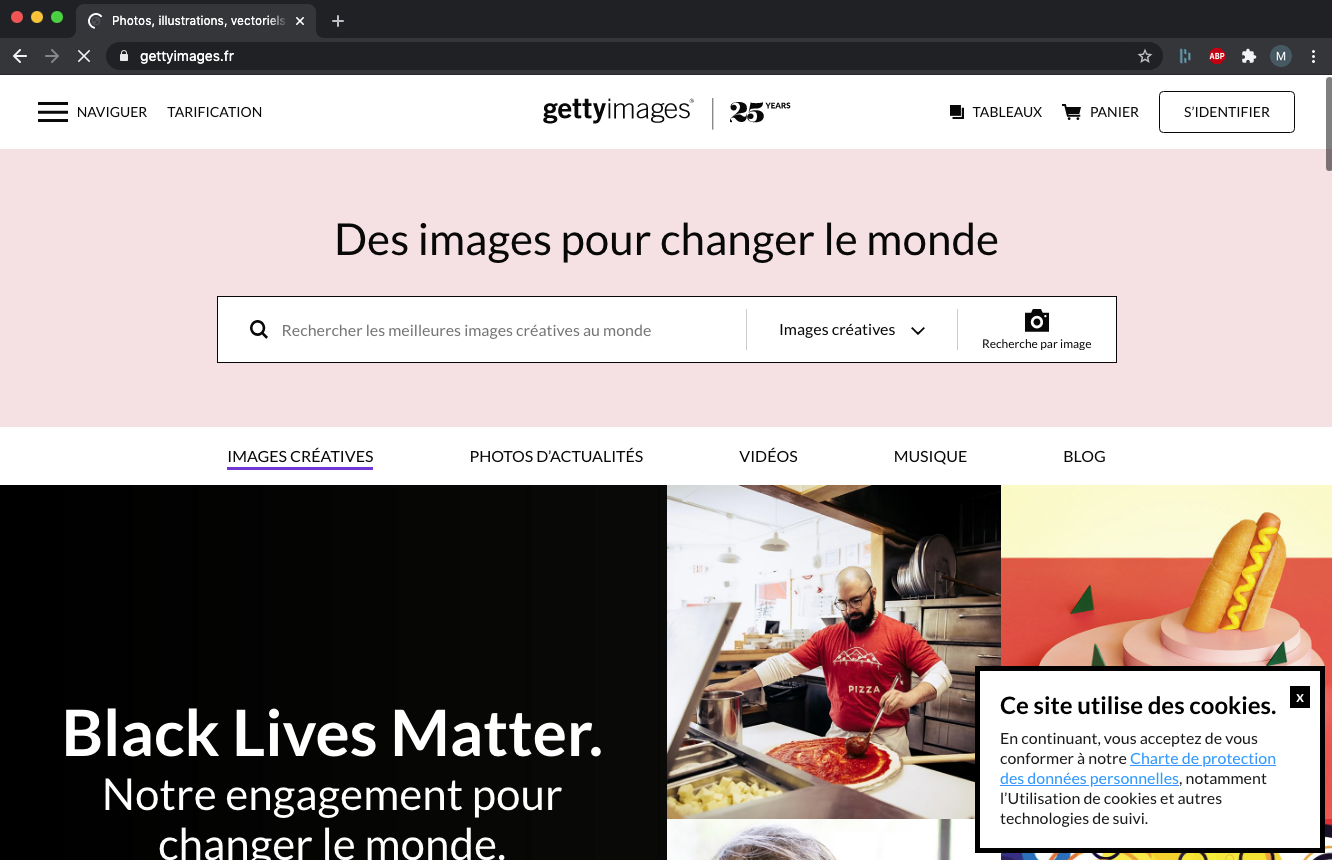 Getty Images - Banque images Sulidae